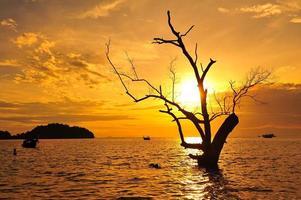 Strand bei Sonnenaufgang Hintergrund foto