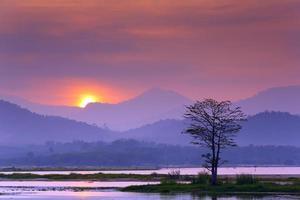 Landschaft mit einem einsamen Baum am See foto