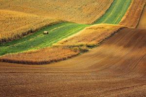 Linien und Wellen im Detail blicken über mährische Felder.