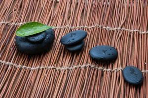Kieselsteine und grünes Blatt