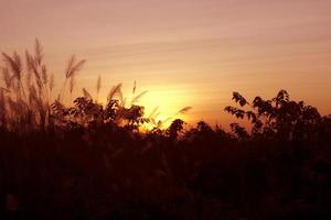 leuchtend orange und gelbe Farben Sonnenuntergang Himmel