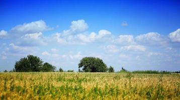 Don Fluss Steppen Landschaft Bäume Himmel Wolken Russland