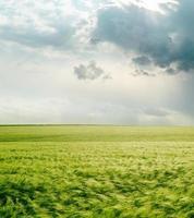 dramatischer Himmel über grünem Feld