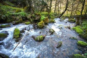 Gebirgsfluss mit Steinen und Himmel foto