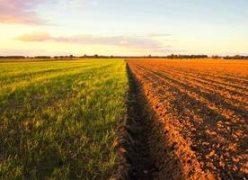 gepflügte Feldlandschaft unter blauem Himmel
