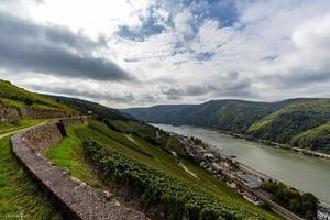 Rhein und Weinberge im Rheingau foto