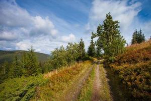 Straße zu den Bergen mit blauem Himmel in Karpaten foto