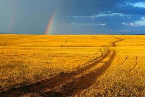 Straße, gelbe Hügel und Regenbogen.