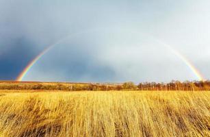 schöner voller Regenbogen über Bauernhoffeld im Frühjahr