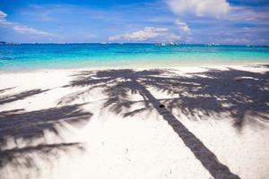 große Schattenpalmen auf dem weißen Sandstrand foto
