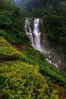 Wasserfall Ramboda foto