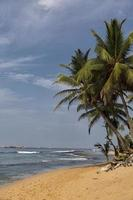 Negombo Strand, Sri Lanka