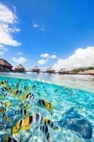 Französisch Polynesien foto