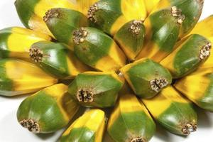 hellgrüne und gelbe Frucht der Pandanaspalme foto