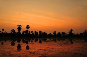 Schließlich mit den Palmen Phetchaburi Thailand. foto