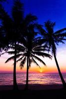 Sonnenuntergang am Strand. Palmen Silhouette. foto