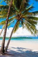 exotischer tropischer Strand mit weißem Sand und blauem Wasser foto