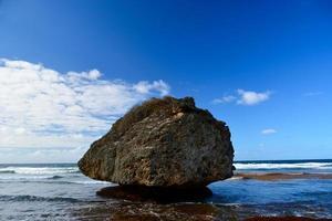 Barbados foto