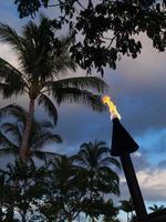 Tiki Fackel und Flamme