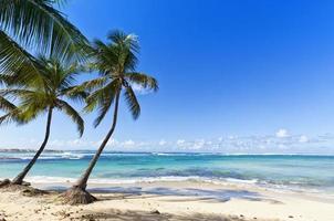 tropischer Strand bei Le Moule, Guadeloupe Island foto