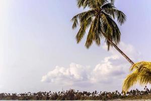 Strandurlaub foto