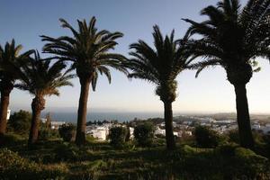 tunesien foto