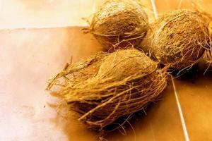 Kokosnuss foto