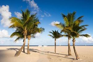 einsamer Strand in Fort Lauderdale foto