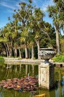 Palmen in botanischen Gärten