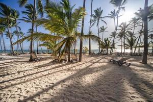 karibischer Sonnenaufgang foto