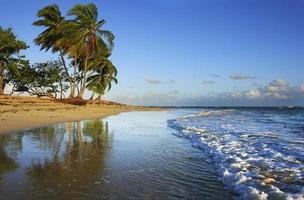 Las Terrenas Strand, Samana Halbinsel foto