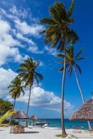Palmenstrand der Mafia-Insel foto