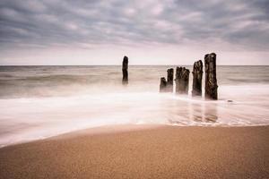 Buhnen am Ufer der Ostsee