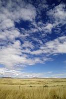 Grasland des wilden Westens (us)