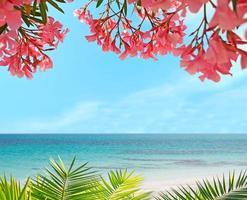 Palme, Blumen und Sand foto