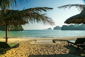 tropisches Resort foto