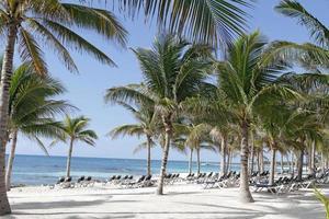 Riviera Maya Mexiko Strand foto