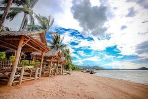 schöner Meerblick mit Palmenbaum auf Koh Samui foto