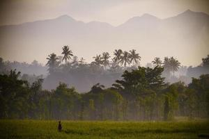 Vulkan Rinjani in Lombok, Indonesien foto