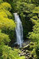 Dominica - Wasserfall
