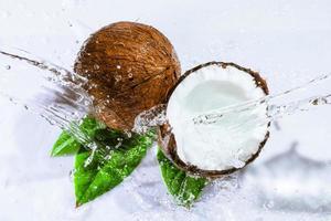 rissige Kokosnuss