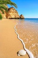 malerischer Strand in warmem Sonnenlicht foto