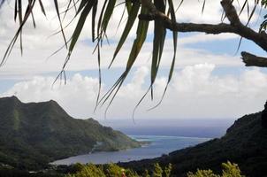 Blick auf die Bucht von Opunohu, Moorea, Tahiti vom Mount Roto Nui