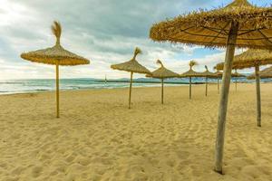 tropischer Strand mit Sonnenschirmen Sonnenliegen Mallorca, Palma de Mallorca foto