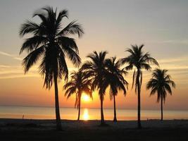 Sonnenuntergang an einem Strand mit Palmen in Kuba