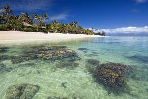 Bungalows am tropischen Strand, mit Korallenriff im flachen Wasser foto