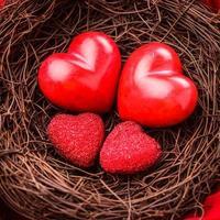 Nest mit Herzen