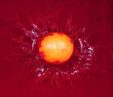 Mandarine in rotem Wasser