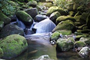 kleiner wasserfall über felsen, neuseeland