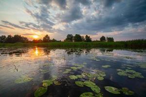 blauer Teich